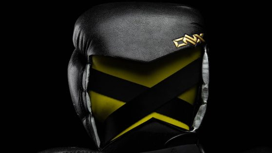 """ONX Boxing Gloves """"X-Factor"""""""