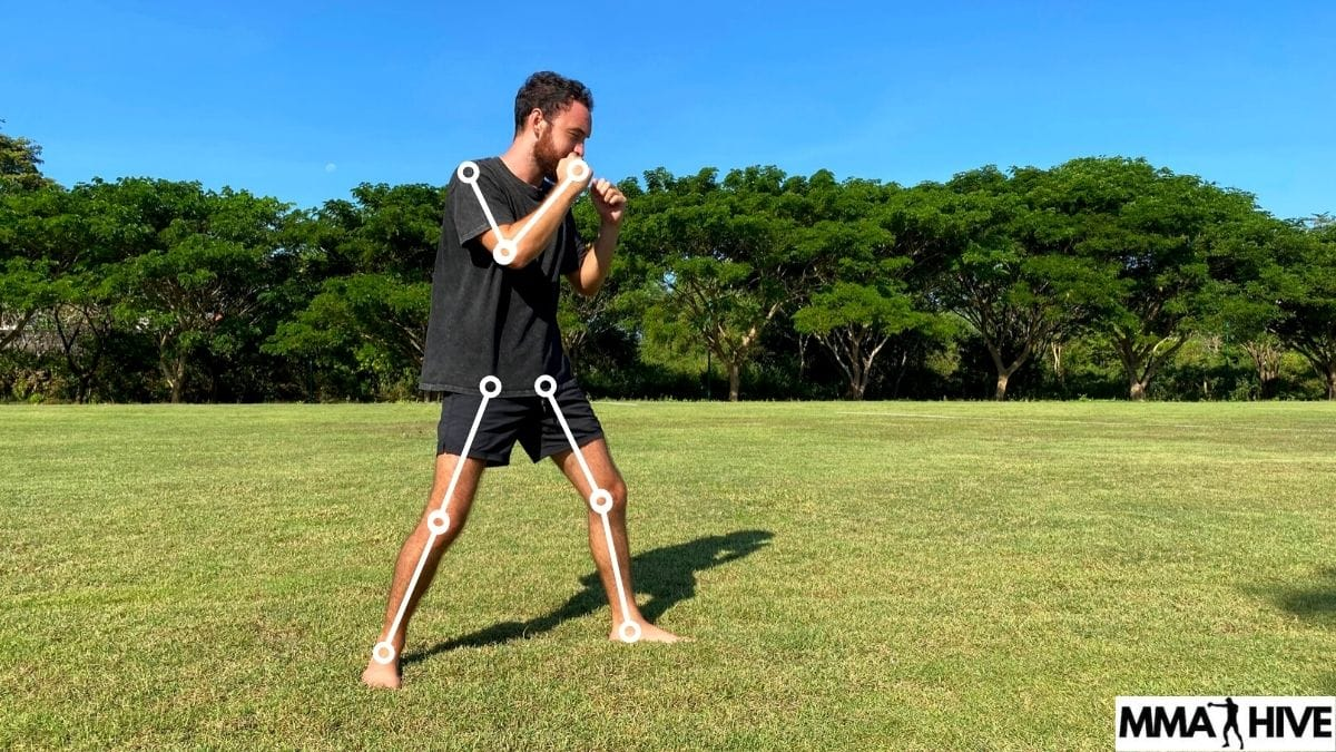 Punching stance with joints anatomy