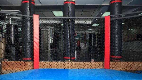 The inside of an MMA octagon cage