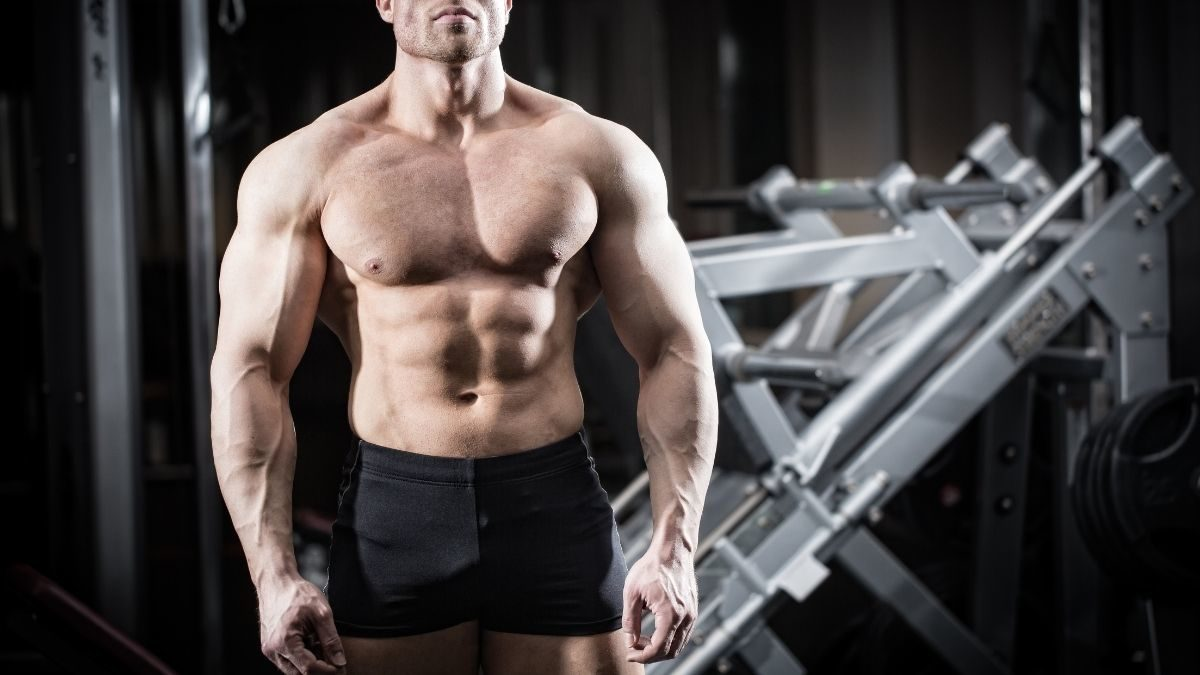 A thick muscular man training at the gym for gaining mass
